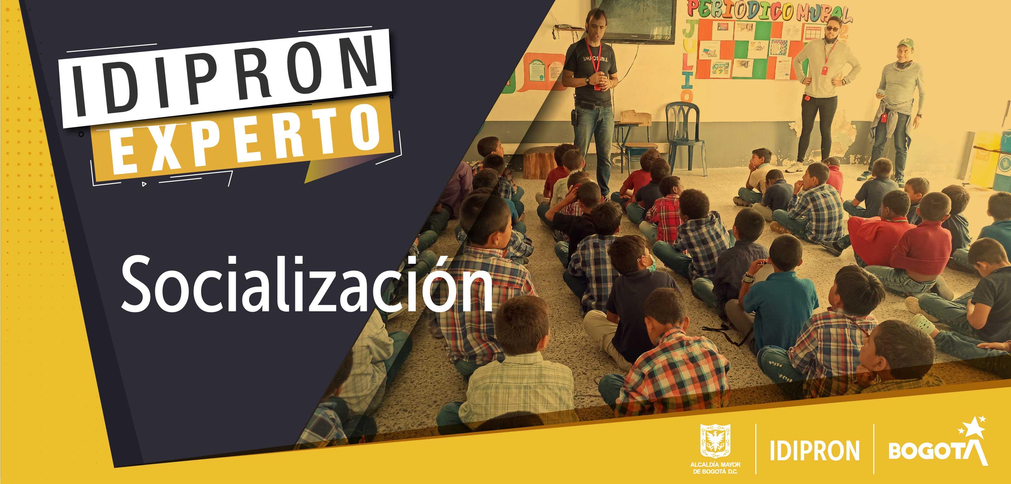 Socialización IDIPRON