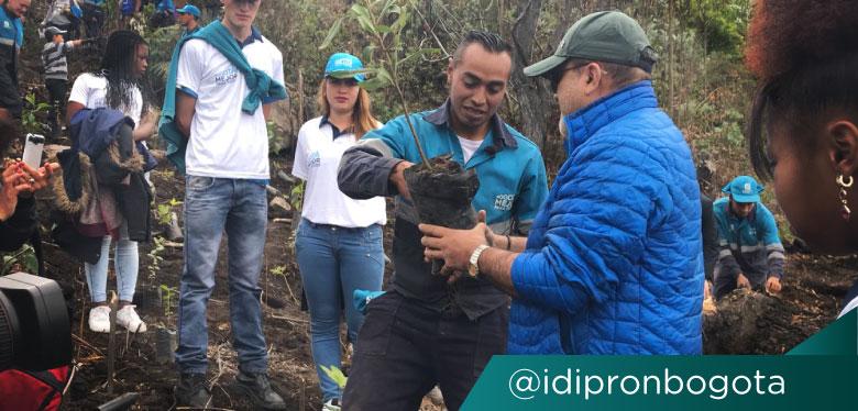 Director Wilfredo Grajales y joven beneficiario del IDIPRON en plantatón