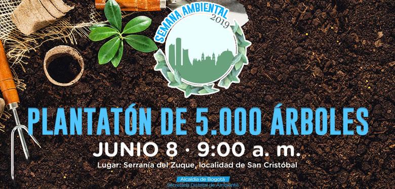 Plantatón de cinco mil árboles en Bogotá